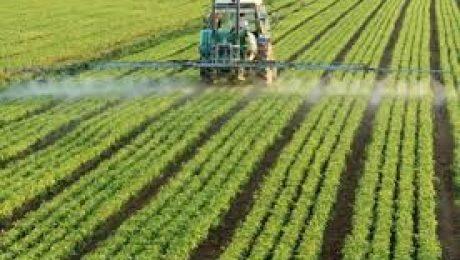 Spreading Fertilizer on Farm Field